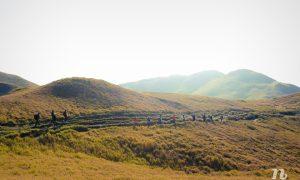 Kinh nghiệm leo núi Pulag, Philippines tự túc